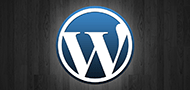 Wordpress &amp; SEO