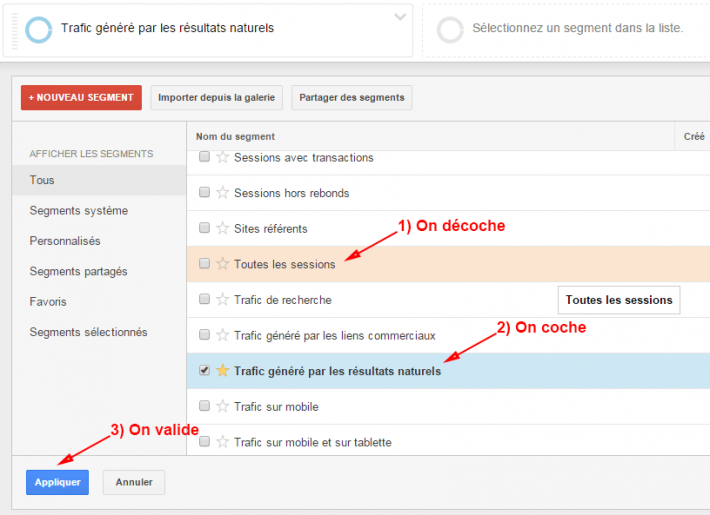 Google Analytics segment trafic organique